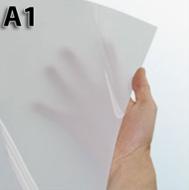 A1-Backlist-Poster