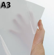 A3 Backlist Poster